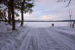 Motoneige et forêt Photos libres de droits
