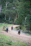 Motor bikes. Three dirt bikes riding into forest Stock Images