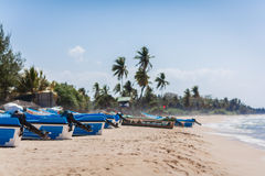 Motor boats of rescuers on the sandy ocean coast. The group of motor boats of rescuers has a rest on the sandy ocean coast against the background of palm trees Stock Photography