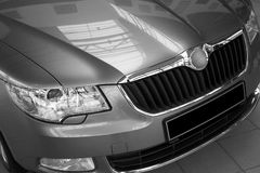 Motor-car headlight and grate of radiator Royalty Free Stock Images