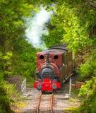 Motor de vapor de la vendimia Fotografía de archivo libre de regalías