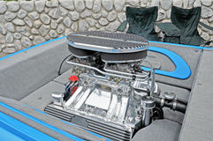 Motor do elefante Foto de Stock
