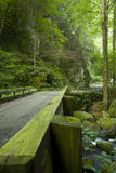 Motor Nature Trail, Great Smoky Mtns NP, TN. Bridge, Motor Nature Trail, Great Smoky Mtns NP, TN royalty free stock image