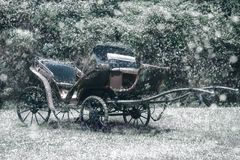 Motor Vehicle, Car, Carriage, Vehicle royalty free stock images