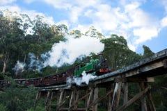 Motor y carros del tren del vapor de Billy que soplan Imágenes de archivo libres de regalías