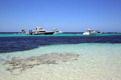 Rottnest Island. Motor Yachts at the Beach on Rottnest Island in Western Australia. Rottnest Island is a small Island near Perth. Its a popular place for Stock Photos