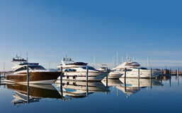 Motor yachts in marina. Row of luxurious motor yachts or boats in harbor or marina; reflecting on blue sea Stock Photos