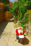 Motorbike in a narrow road with plants Royalty Free Stock Photos