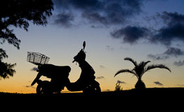 Motorbike in Silhouette. A motorbike silhouetted against a sunset sky, wth a pinapple palm next to it Royalty Free Stock Image