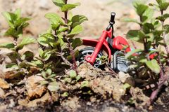 Motorbike toy with plants Royalty Free Stock Images