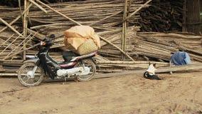 Motorbike, vegetable, basket ,  cambodia Stock Image