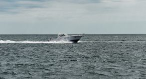 Motorboat in the ocean. Small motorboat during a sunny day around Provincetown, MA, Boston royalty free stock images