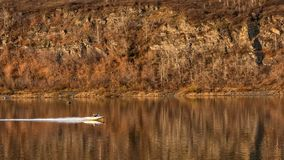 Motorboat sails along the rive. Evening. autumn landscape warm sun light. a speedboat swims along the river royalty free stock photo