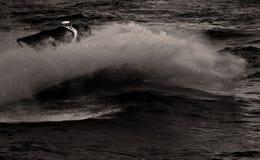 Motorboat splash in Black and White. Big wave from a boat on East River in black and white stock images