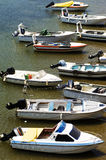 Motorboats Moored in River. Eleven motorboats of various sizes, moored on a riverbank Royalty Free Stock Image