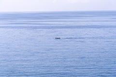 Motorboot im hellen blauen Meer in einem Konzept der gro?en Entfernung der aktiven Erholung, Feiertagen durch das Meer, Unterhalt lizenzfreie stockfotos
