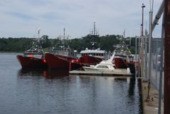 Motorboote Lizenzfreie Stockfotografie