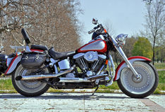Motorcycle cruiser. Parked on the big show royalty free stock photography
