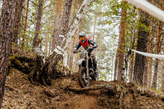 Motorcycle enduro racing. Motocross in forest downhill stock photos