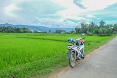 Motorcycle and green field. White motorcycle and the Green Field in Nan province Stock Images