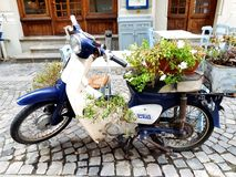 Motorcycle. Old-fashioned, old-school  flowers, holidays, Vespa, vacations Stock Photography