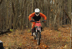 Motorcycle rider in a forest Stock Image