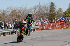 Motorcycle Stunt Rider - Wheelie. VICTORIA/AUSTRALIA - SEPTEMBER 2015: Stunt motorcycle rider performing at a local car show on the 13 September 2015 in Corowa Royalty Free Stock Image