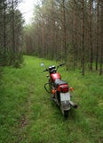 Motorcycle in the woods. Motorcycle parked in the wood grass road Royalty Free Stock Image