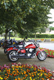 Motorcycles parked up under a tree Royalty Free Stock Image