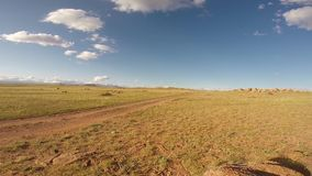 Motorcyclist driving on steppe stock footage