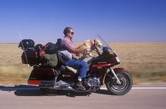 A motorcyclist with his dog cruising on the Interstate Highway in South Dakota Royalty Free Stock Photos
