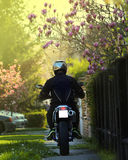 Motorcyclist say hallo to Spring. Spring bee sunrise yelow green Stock Photos