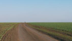 Motorcykeln rider på en grusväg till och med ett grönt fält arkivfilmer