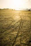 Motorcykelspår i den guld- strandsanden Arkivfoton