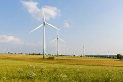 5 motores de vento com prado selvagem Fotos de Stock Royalty Free