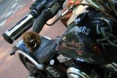 Motorfietsdetails motorrijders stock foto