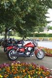 Motorfietsen onder een boom omhoog worden geparkeerd die Royalty-vrije Stock Afbeelding
