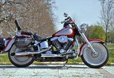 Motorfietskruiser royalty-vrije stock fotografie