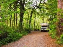 Motorhome που στρατοπεδεύει στο πολύβλαστο πράσινο δάσος στοκ εικόνες με δικαίωμα ελεύθερης χρήσης