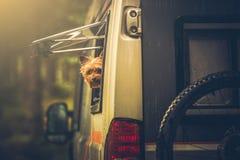 Motorhome Podróżuje z zwierzęciem domowym Obrazy Royalty Free