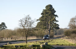 Motoring along a country road in southern England. Motoring along a country road in Wiltshire England UK during wintertime Stock Photography