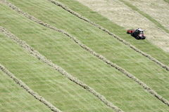 Free Motorised Mower And Rows Of Cut Hay Windrow Royalty Free Stock Image - 77000116
