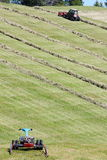 Motorised mower, swather and rows of cut hay windrow stock images