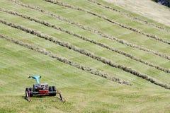 Motoriserad gräsklippningsmaskin och rader av klippt hö & x28; windrow& x29; Royaltyfri Fotografi
