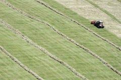 Motoriserad gräsklippningsmaskin och rader av klippt hö & x28; windrow& x29; Royaltyfri Bild