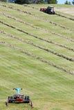 Motoriserade gräsklippningsmaskin, swather och rader av klippt hö & x28; windrow& x29; Arkivbilder