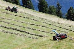 Motoriserade gräsklippningsmaskin, swather och rader av klippt hö & x28; windrow& x29; Royaltyfri Foto