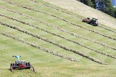 Motoriserade gräsklippningsmaskin, swather och rader av klippt hö & x28; windrow& x29; Royaltyfria Foton