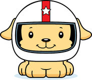 Motorista de carro de corridas de sorriso Puppy dos desenhos animados Imagens de Stock Royalty Free