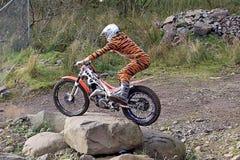 Motorista de ensayo que se coloca en la bici en traje del tigre Imagenes de archivo